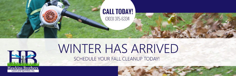 Lawn Care Services Aurora CO
