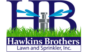 Lawn Care Services in Aurora