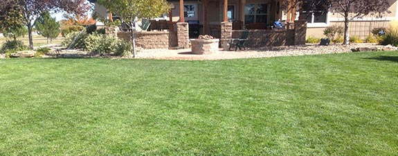 Lawn Care in Aurora